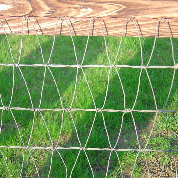 Steel Pipe Fences, Horse Fencing, Livestock Fences